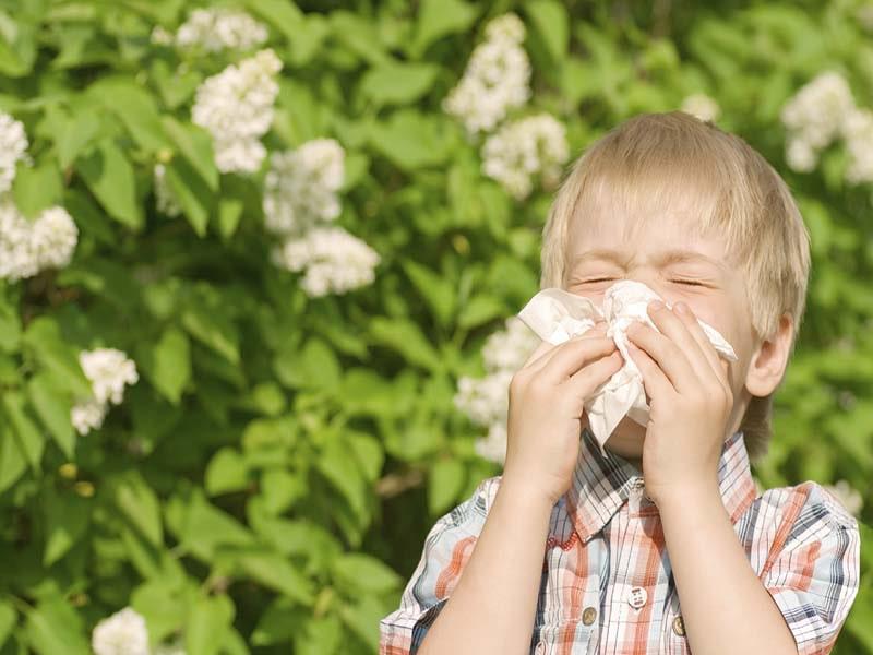 توت فرنگی برای کودک زیر دو سال