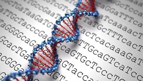 آیا لازم است قبل از بارداری آزمایش ژنتیک انجام دهم؟